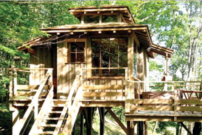 Treehouse & spa